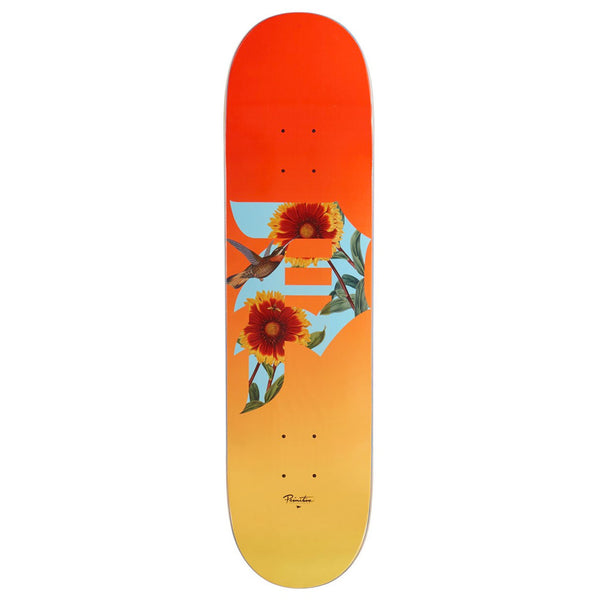 Primitive Dirty P Sunflower Orange 7.8