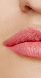 Wild With Desire Lipstick - Pretty Vacant - wish.list boutique