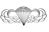 Airborne Symbol Metal Wall Art and Decor