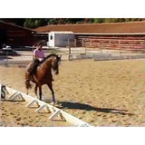 Horseback Riding Intermediate (Download)