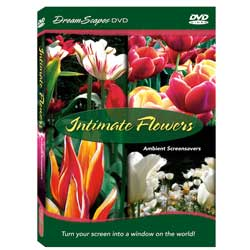 Intimate Flowers Ambient Screensavers