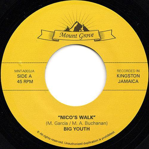 Big Youth - Nico's Walk // Powerdrill - The Day Is Dawning - 7""