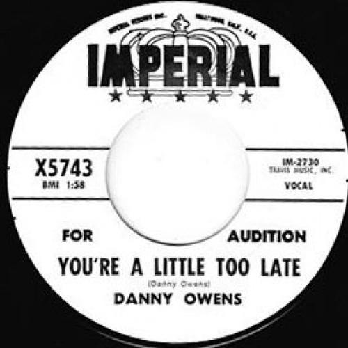 DANNY OWENS – YOU'RE A LITTLE TOO LATE // I THINK OF YOU - 7""