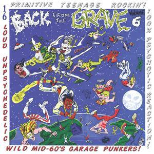 Back From The Grave Vol6 LP