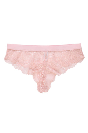 SOFRA LADIES LACE THONG (LP7998LT) - BOX ONLY