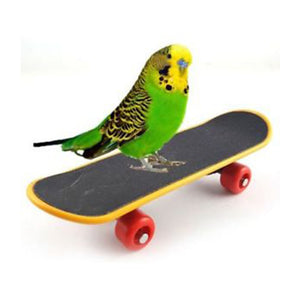 Parrot Intelligence Toys Mini Skateboard