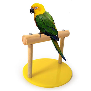 Parrot Wooden Tabletop Perch With Acrylic Base Training Perch weighting perches