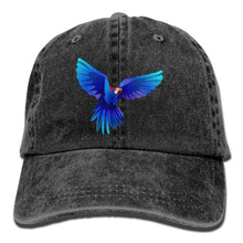 Load image into Gallery viewer, Denim Baseball Cap Adjustable