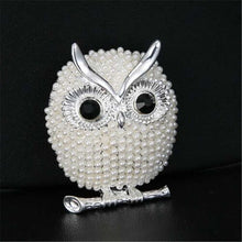 Load image into Gallery viewer, Vintage Owl Crystal Brooches