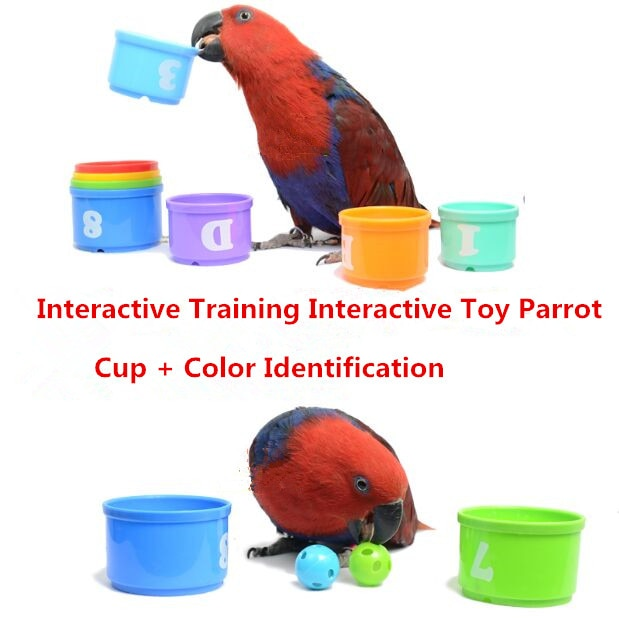 Eco-friendly Colourful Plastic Education Parrot Puzzle Toy