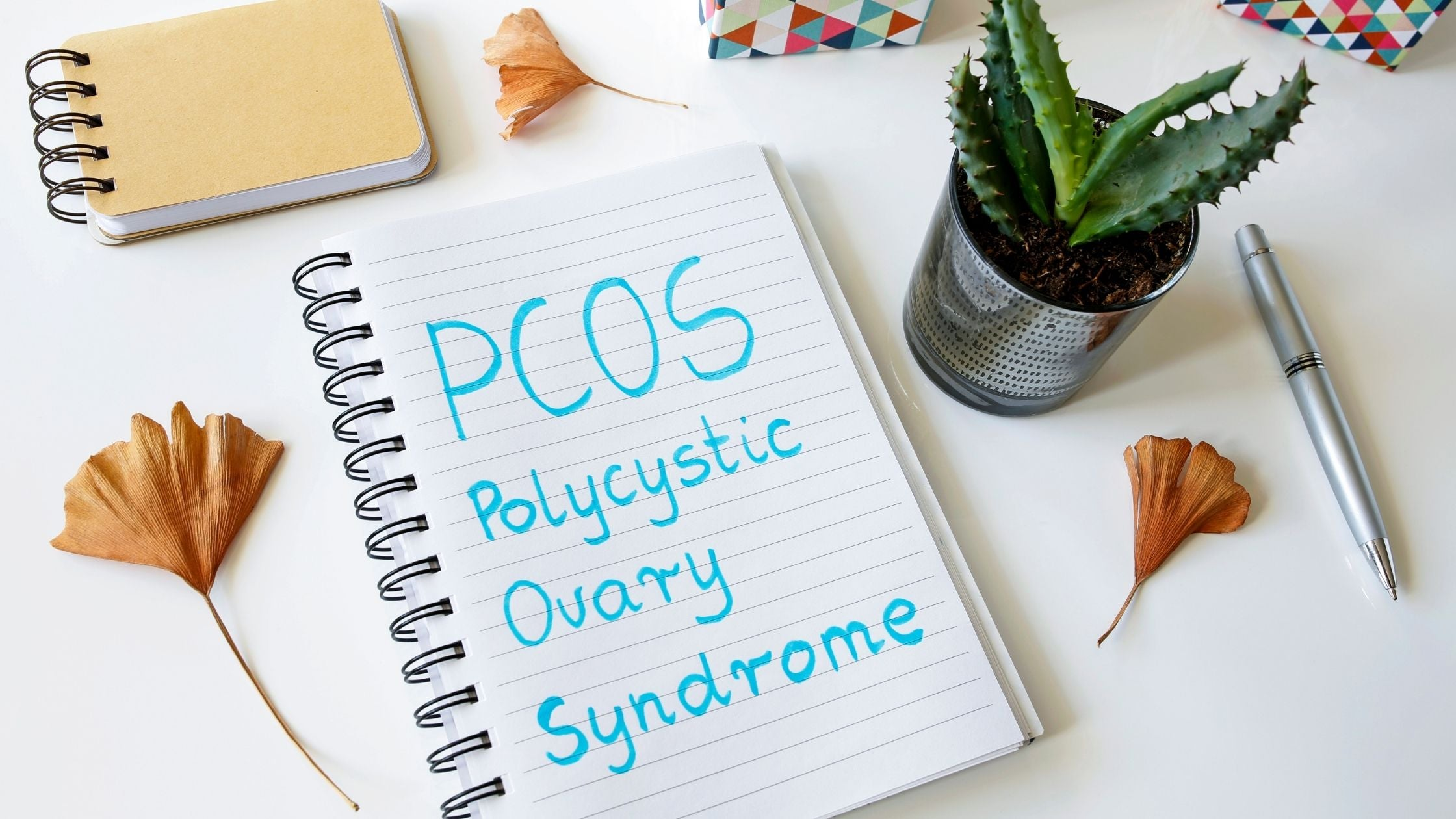 The best natural remedies for PCOS