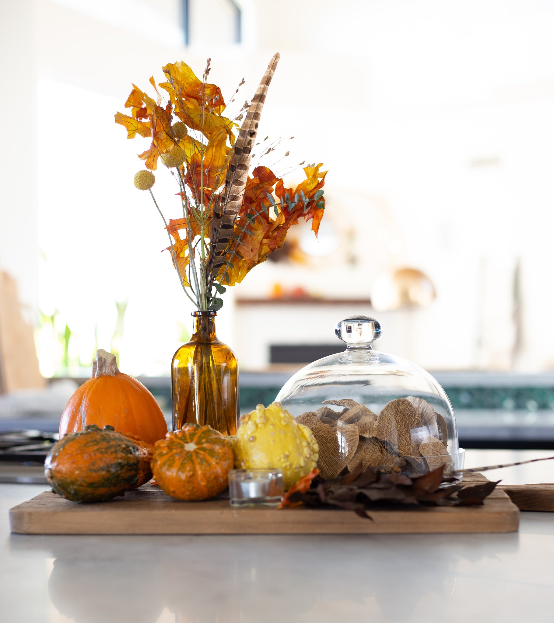 Easy Fall decor with Bari J.