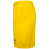 Youth Away Shorts 2020-22