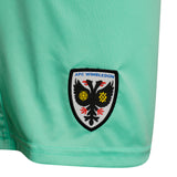 Adult GK Shorts 2020-22 - Green