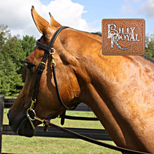 Load image into Gallery viewer, BRIDLE Billy Royal Arabian Training Bridle