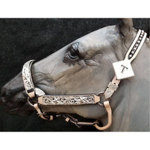 Load image into Gallery viewer, Custom Black and Silver Show Headstall