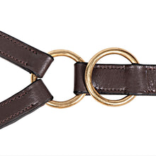Load image into Gallery viewer, MARTINGALE Premier 10 Ring Training Martingale