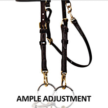 Load image into Gallery viewer, Victor Supreme® Bob Hart Training Bridle