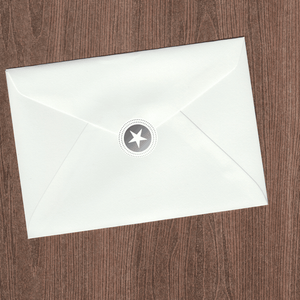 Silver Star Envelope Seal (Pack of 30)
