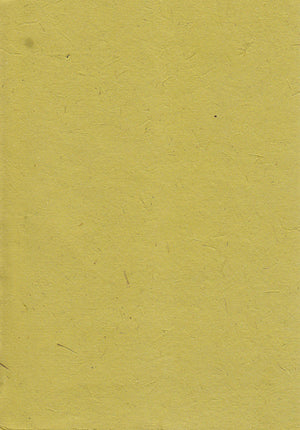 Elephant textured lime paper