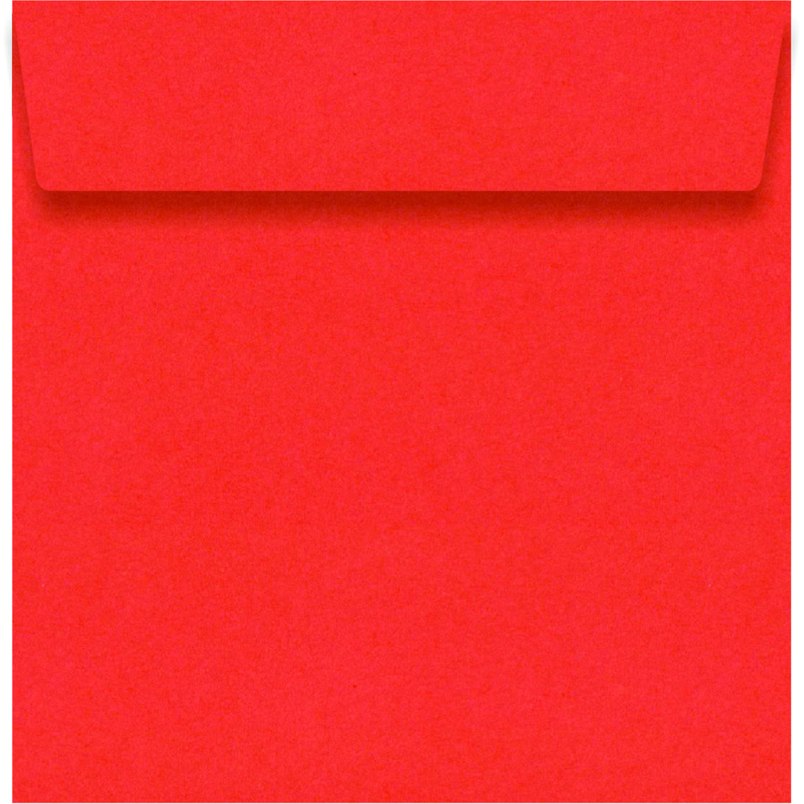 Fantail Orange 130 x 130mm Envelope