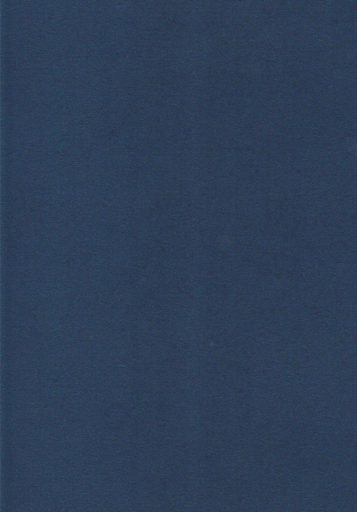 Metallic Navy A4 Card