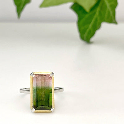 """Amazonia"" 6.92ct Baguette Watermelon Tourmaline Ring Ring JasonRee"