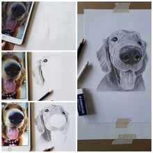Load image into Gallery viewer, Original Handmade Custom Pet Portrait in Graphite