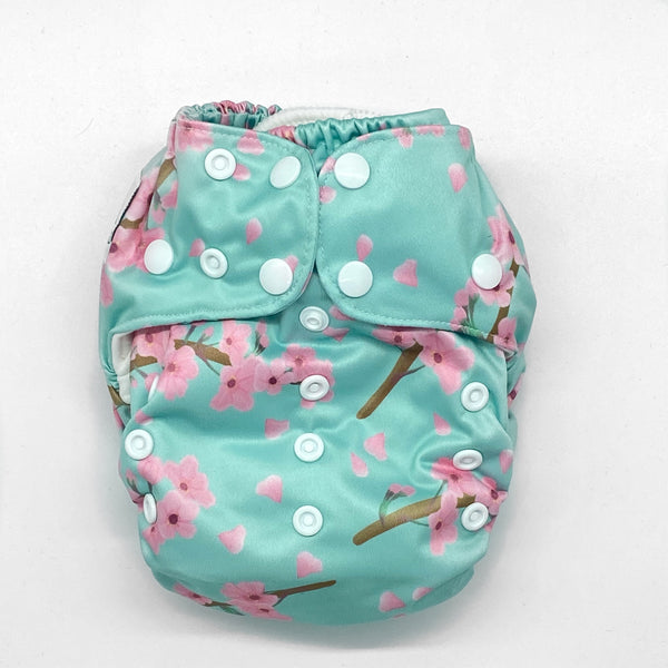 Brainy Bums AIO (All in One) Nappy
