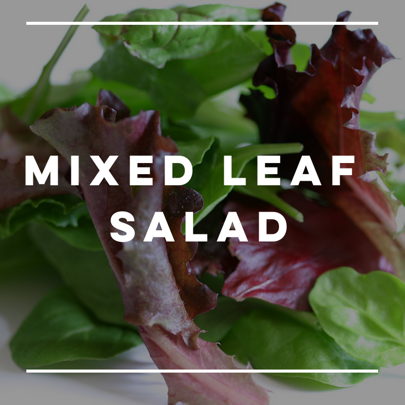 Mixed Leaf Salad - local