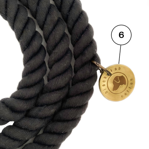 Black dog lead with brass tag