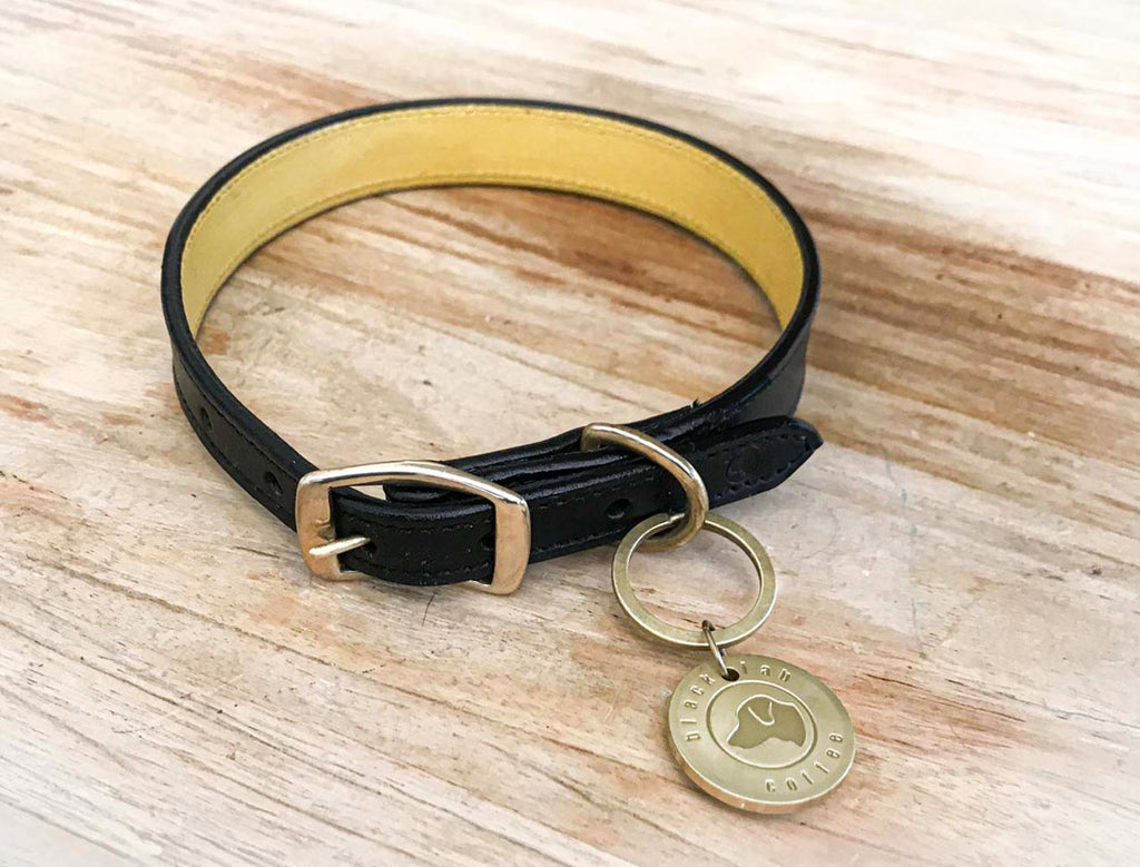 black leather dog collar on timber