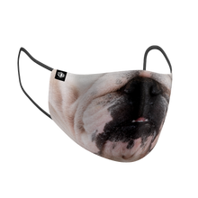 Load image into Gallery viewer, Bulldog
