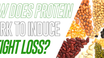 How Does Protein Work to Induce Weight Loss?