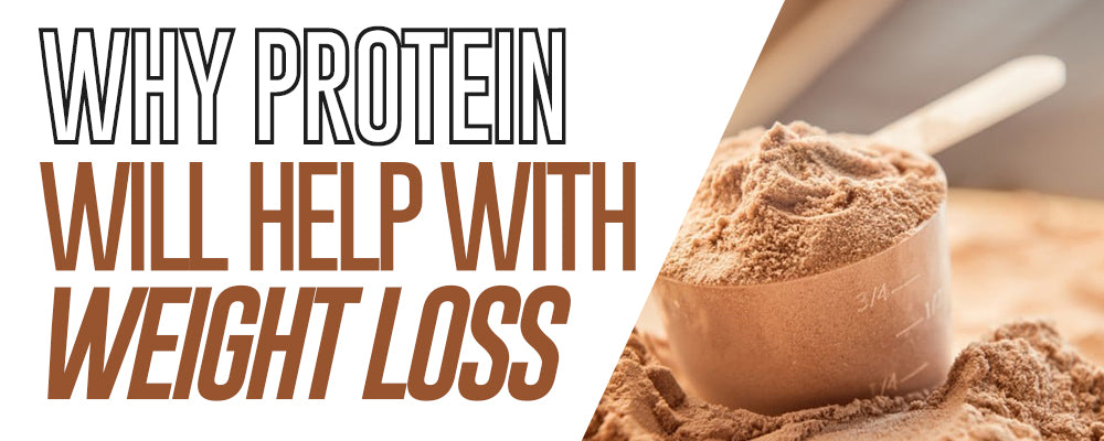 Why Protein Will Help With Weight Loss