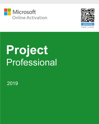 Microsoft Project Pro 2019 - 1 PC