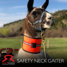 Load image into Gallery viewer, Llama Safety Neck Gaiter