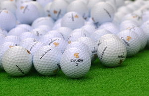 Wholesale Customized logo High quality Two Layer ball Golf Balls Practice Golf Balls with numbers