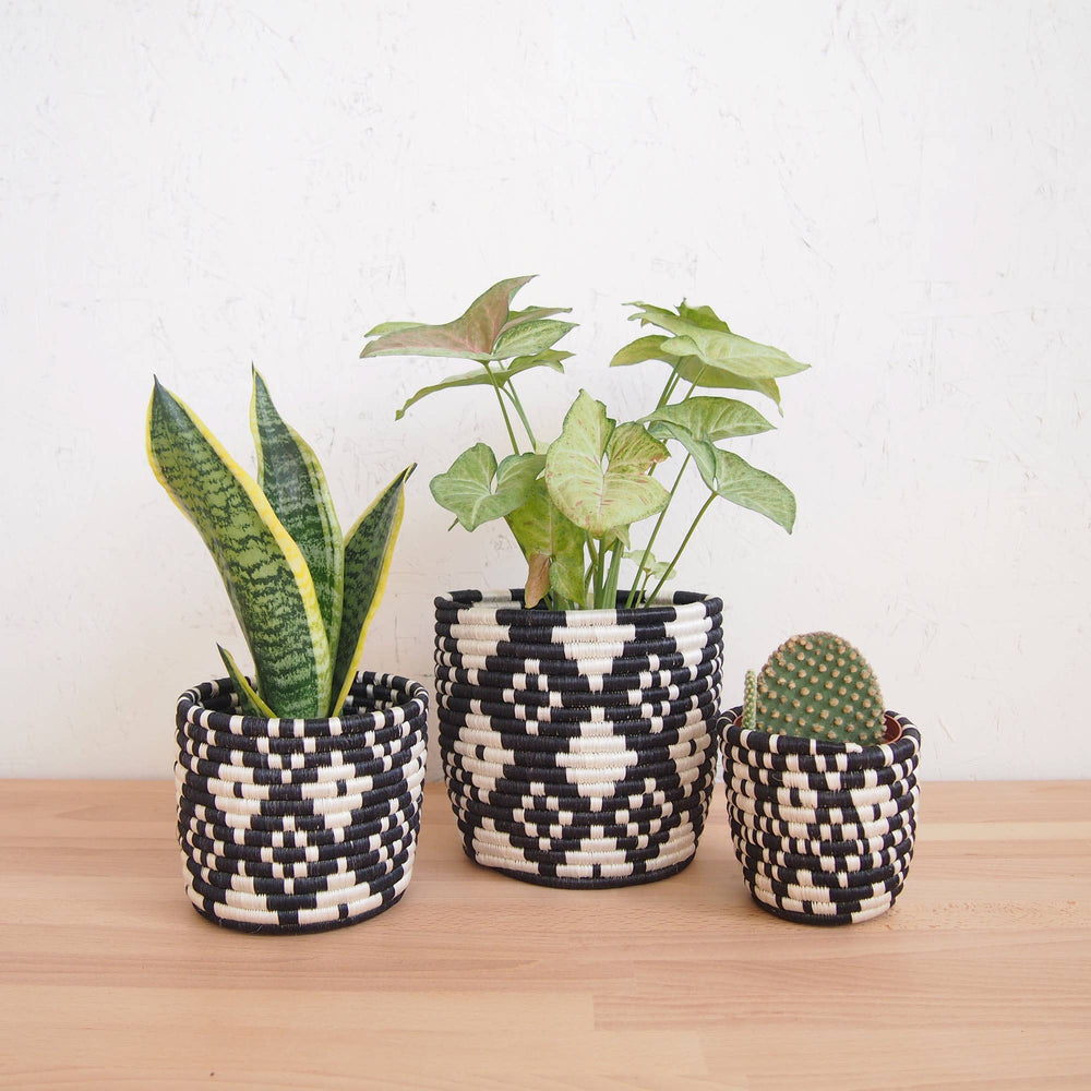 Load image into Gallery viewer, Ndora Basket Planters