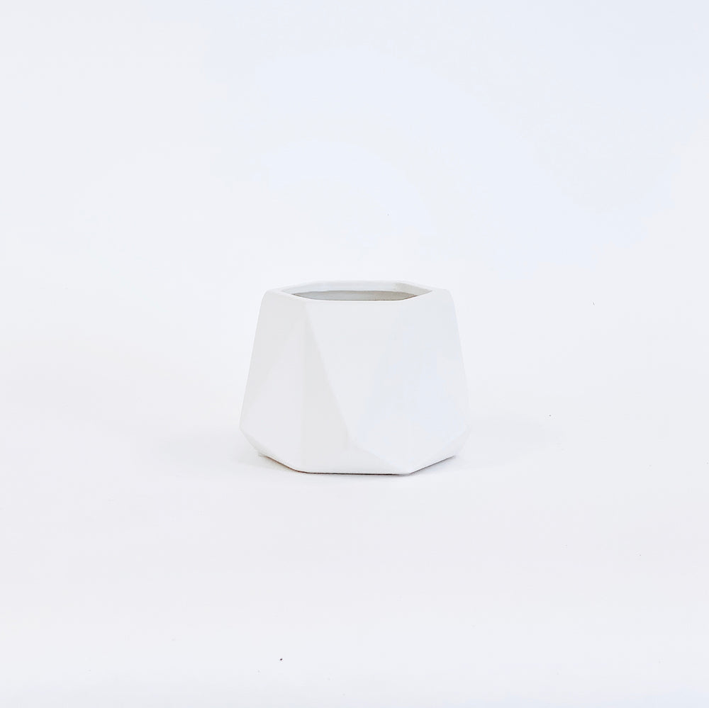 "Dell Bowl 6"" - White Matte"