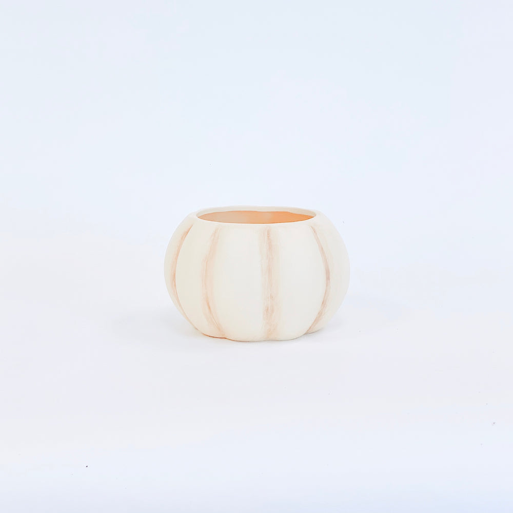 Ivory Pumpkin Terra Cotta Pot