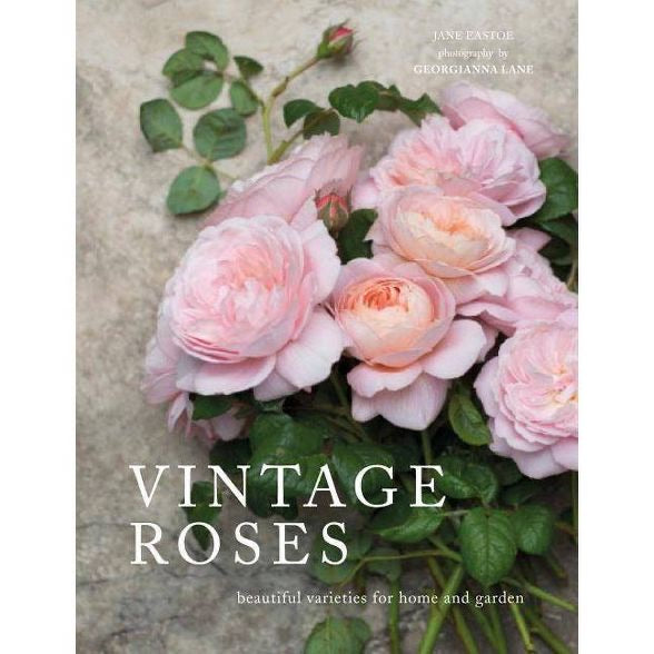 Vintage Roses by Jane Eastoe