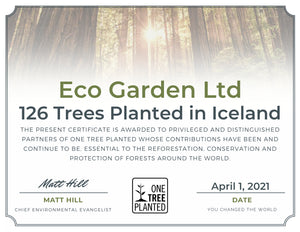 126 Trees Planted in 🇮🇸 & A Warm Thank You!