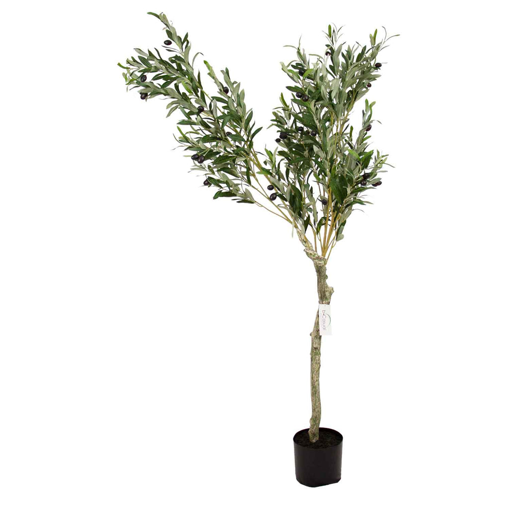 Planta artificial Olivo 160cm bCasual