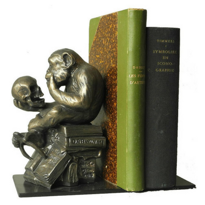 Rheinhold The Darwin Monkey - Book-End