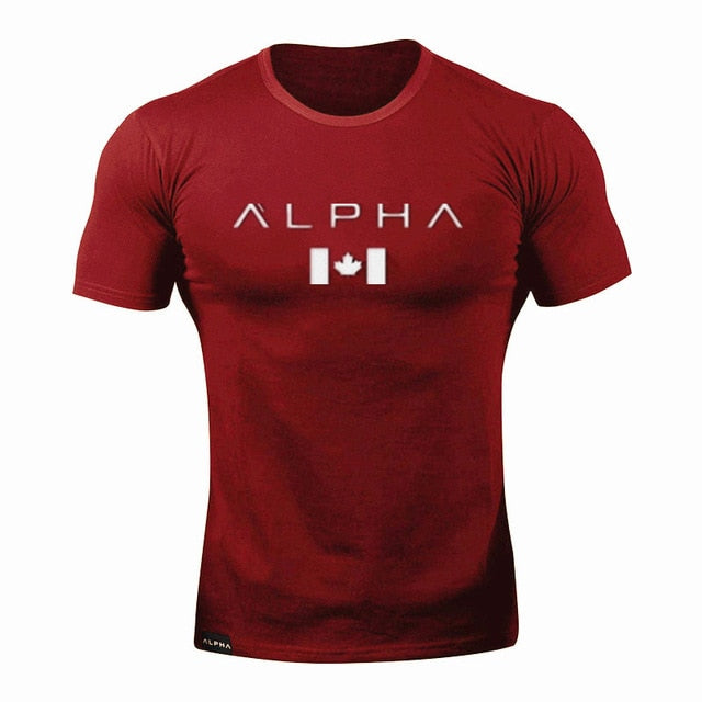 2019 New Brand Clothing Gyms Tight Cotton T-shirt Mens alpha Fitness T-shirt Homme Gyms T Shirt Men Fitness Summer Tees Tops