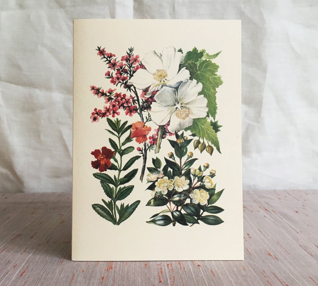 Greeting card - Manuka
