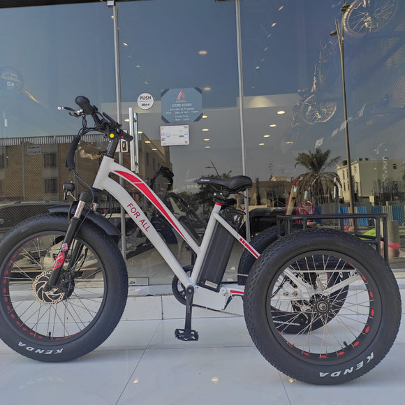 3 Tire Electric Bike