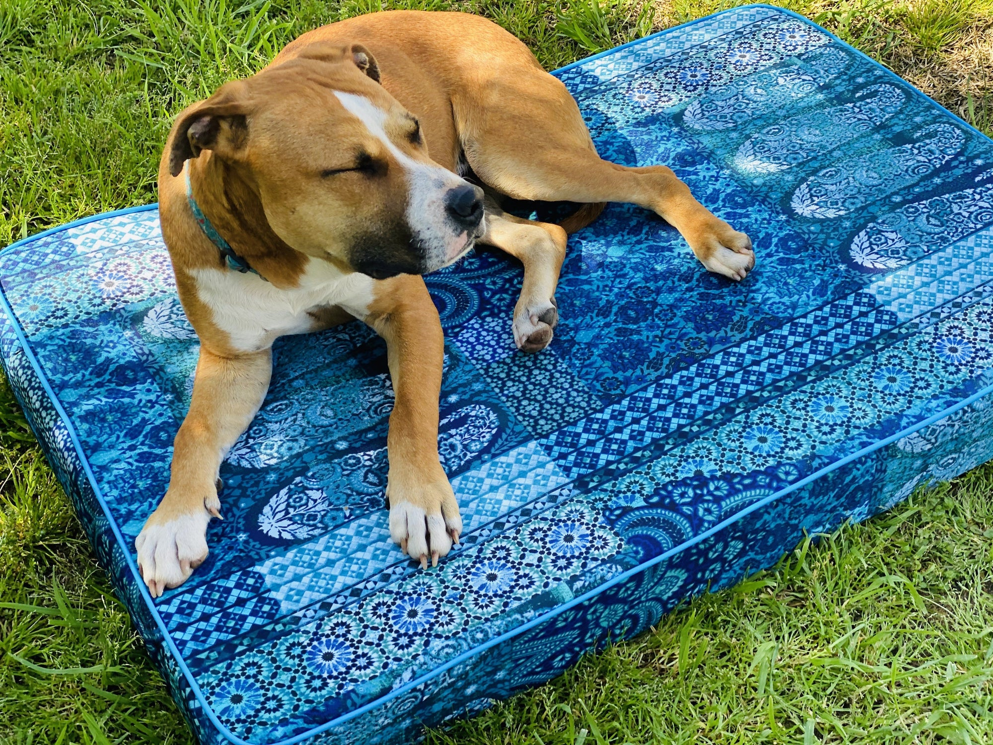 Pet beds - complete with removable cover! Yoga bolsters and Floor Cushions - Assassinsdesigns Blue paisley (water resistant) Medium