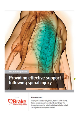 Spinal Injury Guidance Report